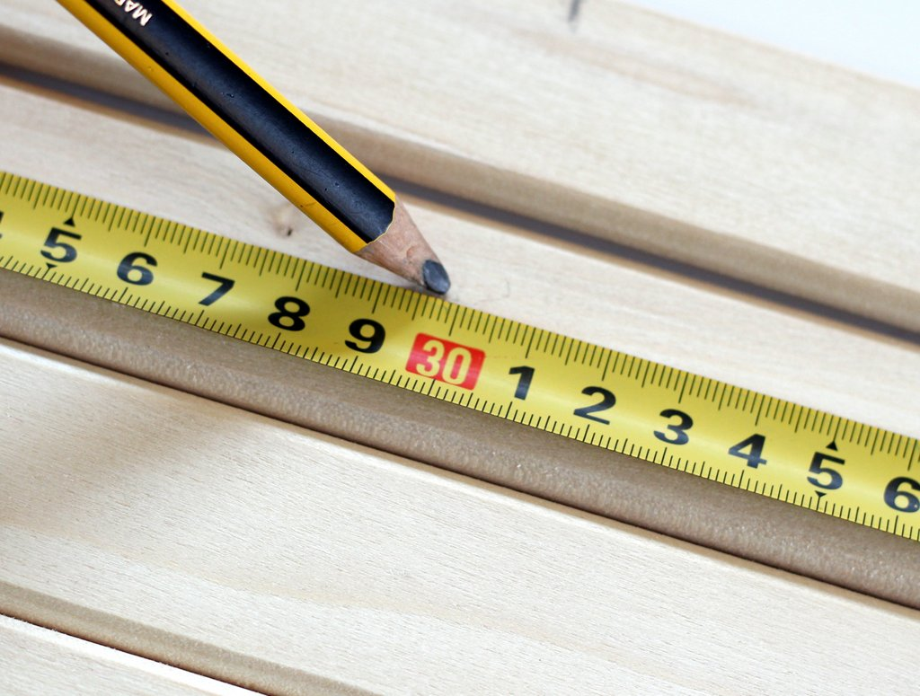 מסמנים מידות לחיתוך העצים
