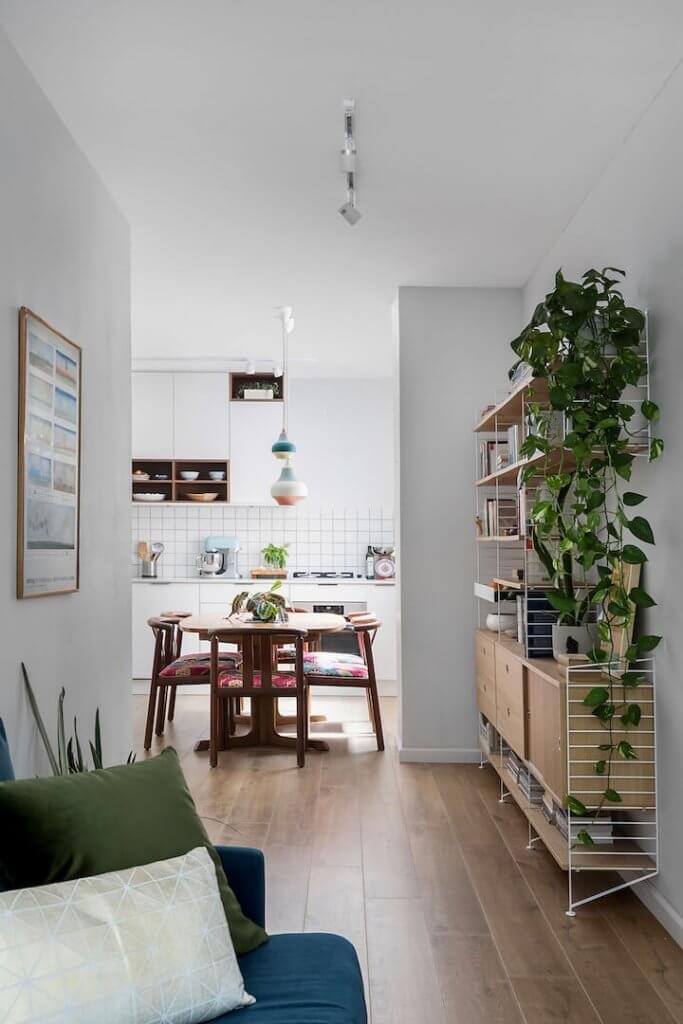 שילוב צמחי בית משלים את הראייה ההוליסטית