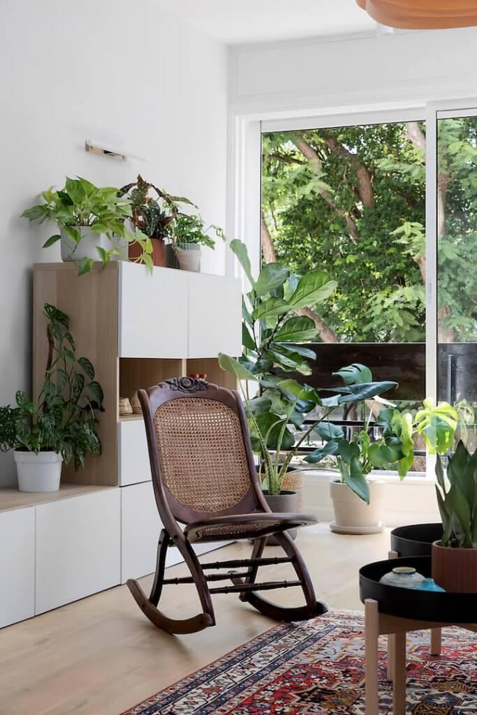 עיצוב עם צמחים, צמחי בית, גידול צמחים בבית, סטיילינג עם צמחים