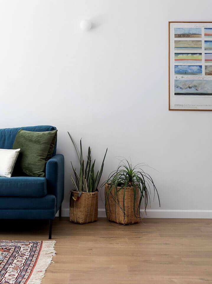 מינימליזם, עיצוב סלון עם צמחים, צמחי בית, ספה כחולה, תמונה של טבע, עונות השנה